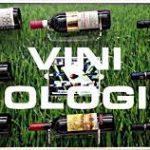 Il biologico conquista il vino: ecco i 10 trend…
